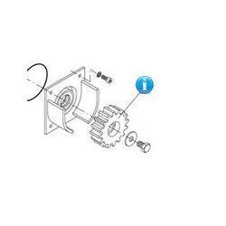 9686032 ricambio ingranaggio motore cancello beninca MS4 e BULL